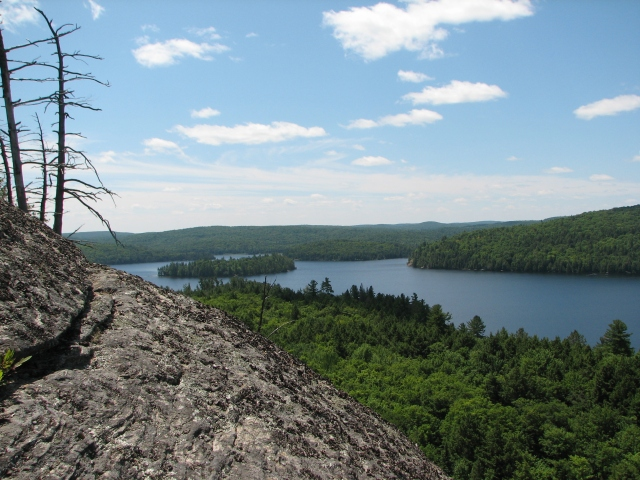 Connected forest lake in Algonquin Park